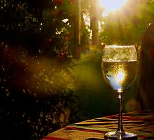 Evening Respite by Barbara  Brown