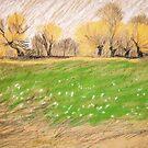 Weiden Saum by HannaAschenbach