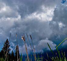 Stormy BC Sky by Derek Lowe