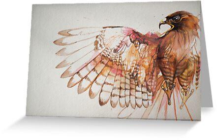 hawk I by Fache Desrochers