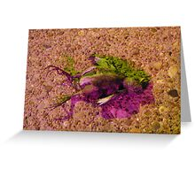 Lime and Grape Smashed Bird Greeting Card