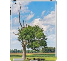 Cows in the Shade iPad Case/Skin