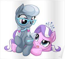 Silver Spoon and Diamond Tiara Poster