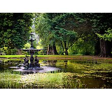 The Dolphin Pond Photographic Print