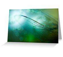 Emerald Damselfly  Greeting Card