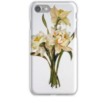Double Narcissi In A Bouquet iPhone Case/Skin