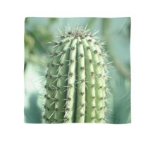 cactus photography Scarf