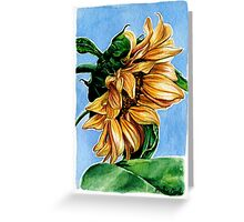 Sunflower Watercolor Painting Greeting Card