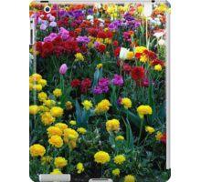 The Glory of Spring iPad Case/Skin