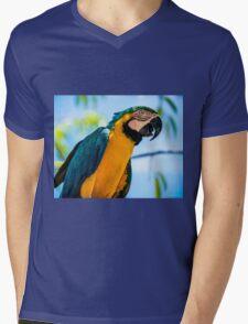 Birds Eye View Mens V-Neck T-Shirt