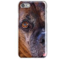 There's Something Special About Older Dogs iPhone Case/Skin