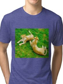 Two Lionesses Reclined Tri-blend T-Shirt