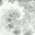 Spiral in White by Dana Roper