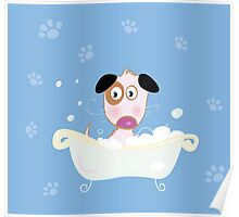 Cute dog bath. Bathing cute small doggie Poster