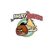 The Angry Beavbirds Photographic Print