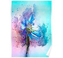 Poppy Art Poster