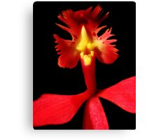 Rooster Tale - Orchid Alien Discovery Canvas Print