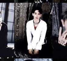 EXO Collage Sticker