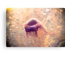 Ocean JellyFish Metal Print