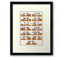 Rodents Alphabet Framed Print
