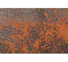 Leather Texture Photographic Print