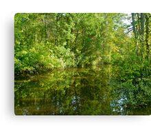Creek At Whitesbog - Browns Mills - New Jersey - USA Canvas Print