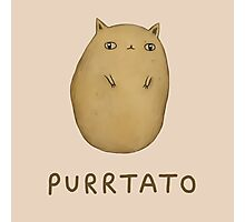 Purrtato Photographic Print