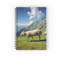 Sheep in the Alps, Nordkette Mountain, Innsbruck Austria Spiral Notebook