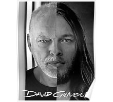 David Gilmour Changed Poster