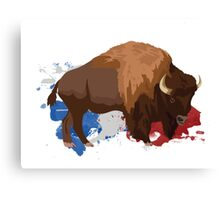American Buffalo Canvas Print