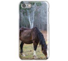 Highway Horses iPhone Case/Skin