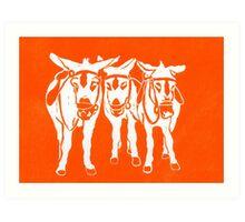 Seaside Donkeys in Orange Art Print
