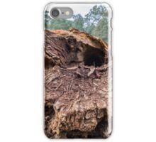 Tree Rot iPhone Case/Skin