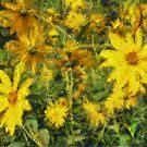 Silphium Perfoliatum by jean-louis bouzou
