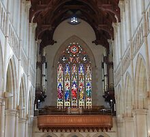 Stained Glass Windows at Sacred Heart Cathedral - Large Print Size by Steven Jodoin