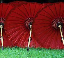 Red Bellies by Taryn East