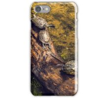 3 turtles on a tree trunk iPhone Case/Skin