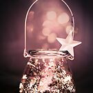 Wishes in a jar by Sue Nueckel