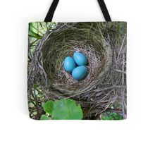 Bird's Nest with Eggs Tote Bag