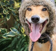 Funny Dog Wearing Hat Sticker