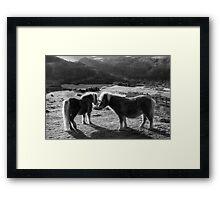 MOORLAND MEETING Framed Print