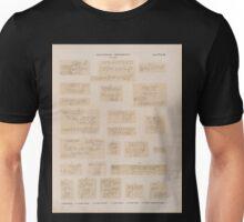 0704 Sinaitische Inschriften No 1 23 1 Wadi Hebrân 2 4 Naqb el Haui 56 Wadi e'Schech 7 17 Wadi Aleyât 18 Stadt Firân 19 23 Wadi Mokatteb Gruppe A Unisex T-Shirt