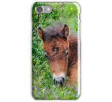 Nature's Shelter iPhone Case/Skin