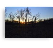 Aspen Prairie Sunset Canvas Print