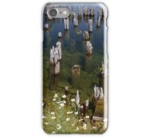 Old Pilings Fayette State Park 3 iPhone Case/Skin