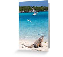 soakin' dem rays Greeting Card