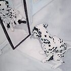 Roxie the Dalmatian 2 by Yvonne Carter
