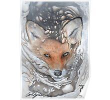 Ruths Fox Poster