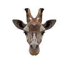 Geometric Giraffe Face Photographic Print
