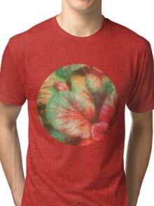 RED GREEN LEAFY PLANT Tri-blend T-Shirt
